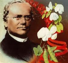 Retrato de Johann Gregor Mendel