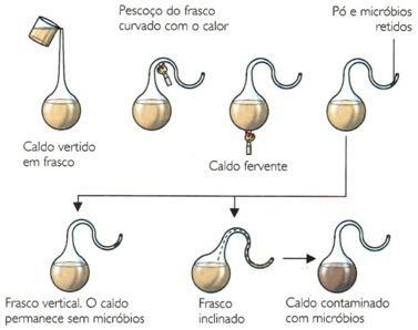 Experimento de Pasteur sobre a origem da vida.