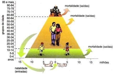 Dinâmica de uma pirâmide etária