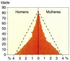 Composição etária, segundo idades individuais