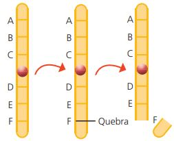 Mutação cromossômica estrutural por delação.