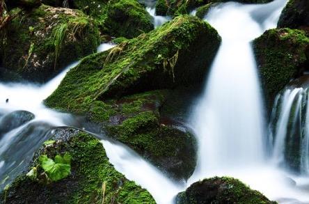 Pedras cobertas por musgos em uma cachoeira.