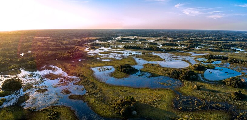 Foto do Pantanal com sua planície alagada.