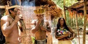 As Populações Indígenas do Brasil
