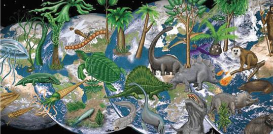 Origem e Evolução das Plantas
