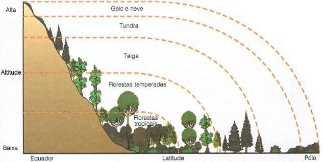Distribuição dos biomas terrestres conforme a altitude e latitude
