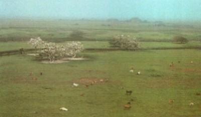 Campos no Rio Grande do Sul