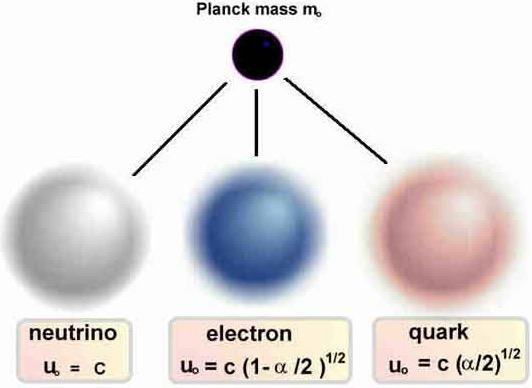 quark a nova porçao da matéria