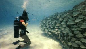 Mergulhador usando cilindro de oxigênio