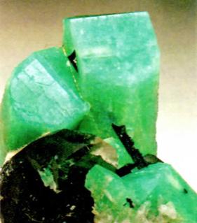Mineral Tantalita