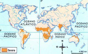 Mapa da Savana