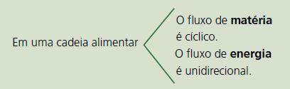 Classificação dos níveis tróficos.