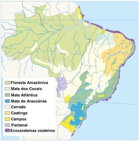 Mapa do Brasil com os ecossistemas brasileiros demarcados.
