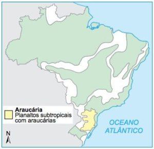 Mapa do Brasil com a localização das Araucárias.