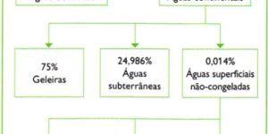 O que é um organograma? Como elaborar e interpretar