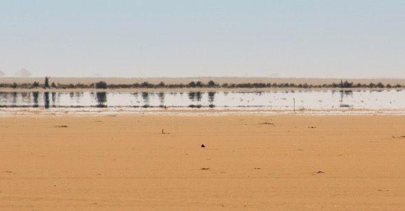 Miragem ocorrendo em um deserto.