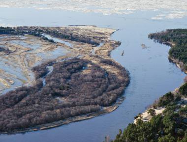 Os lagos fazem parte do ecossistema aquático.