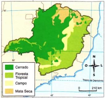 Mapa indicando a localização das diferentes vegetações de Minas.