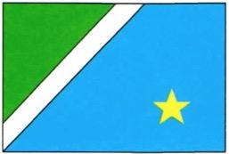 Bandeira de cores azul e verde com uma estrela no canto inferior direito.
