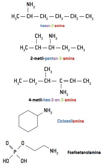Nomenclatura de aminas.
