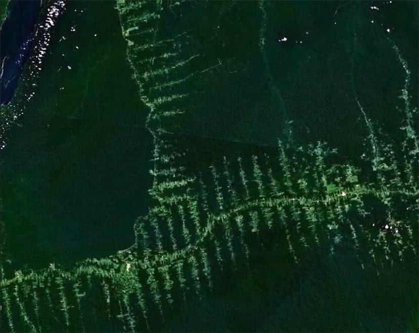 Foto tirada por satélite do desmatamento na Amazônia.
