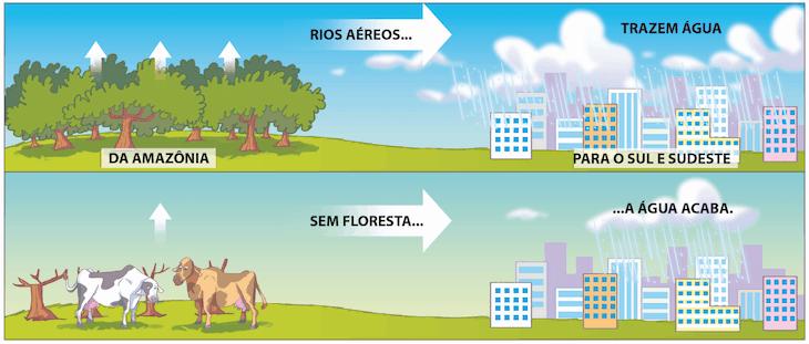 Importância dos rios voadores da Amazônia.