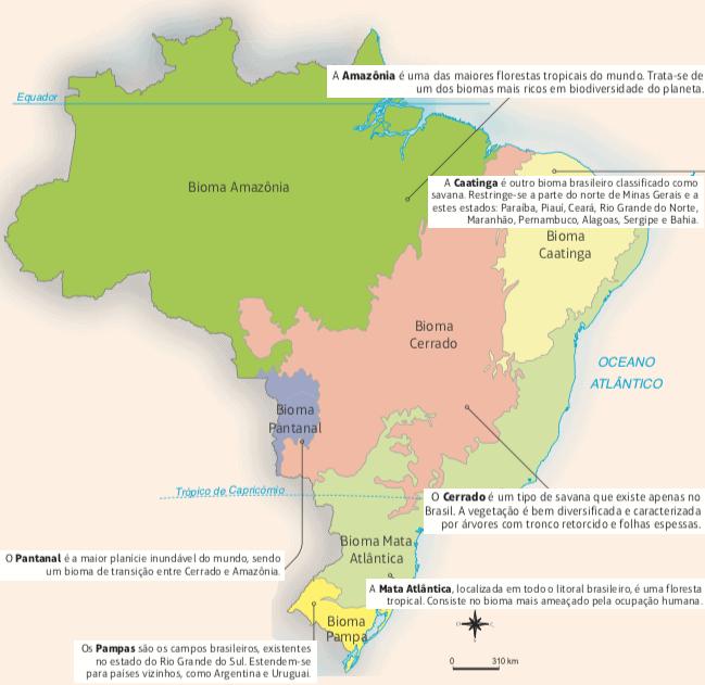 Mapa dos biomas brasileiros.