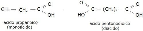 monocarboxílicos e dicarboxílicos