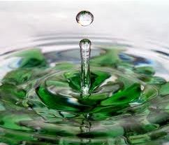 Pingo de água