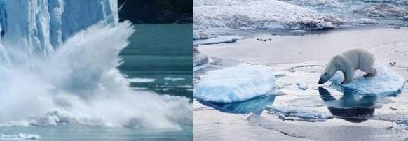 Efeitos do aquecimento global nos polos
