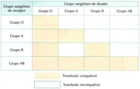 Compatibilidade dos grupos snaguíneos