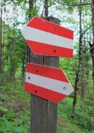 placas de decisões