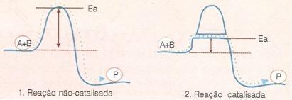 Reação catalisada por enzima
