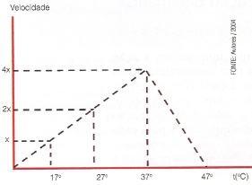 Ação da temperatura sobre um enzima