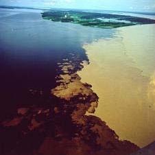Rios da floresta amazônica