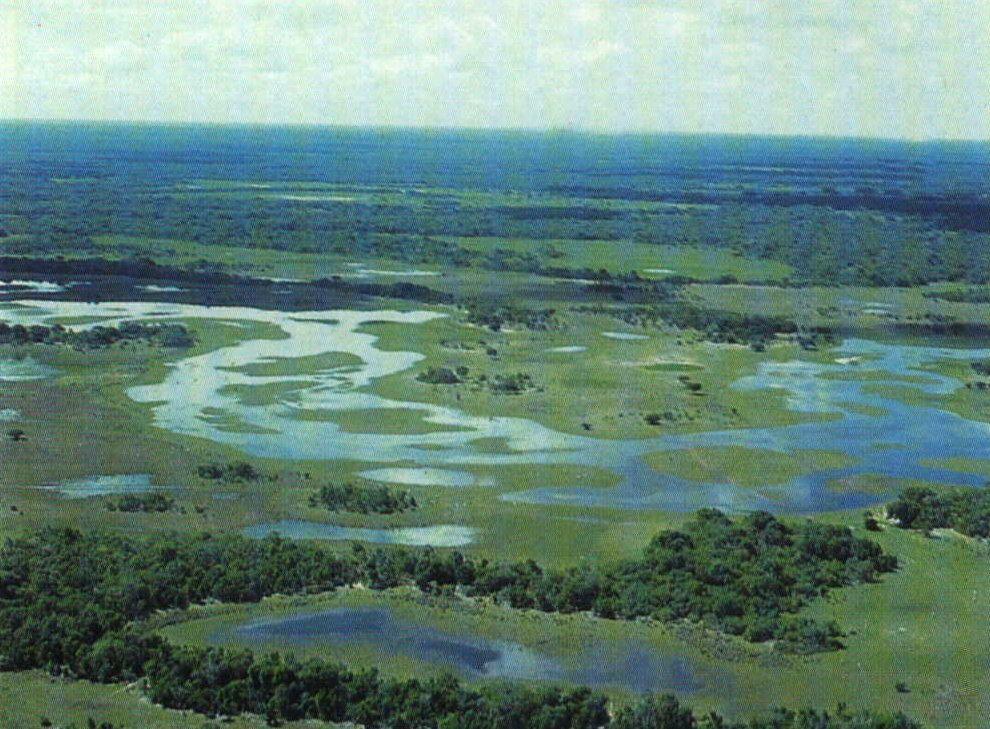 Paisagem do Pantanal
