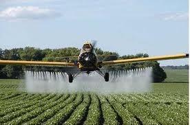 O uso de inseticidas agrícolas provoca poluição do solo