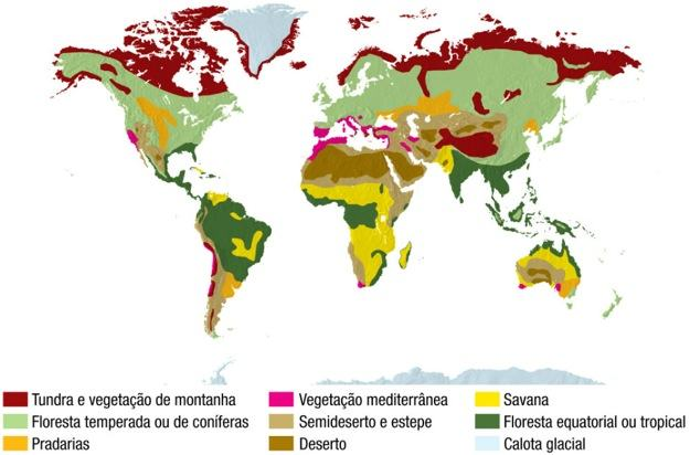 Tipos de vegetação no mundo